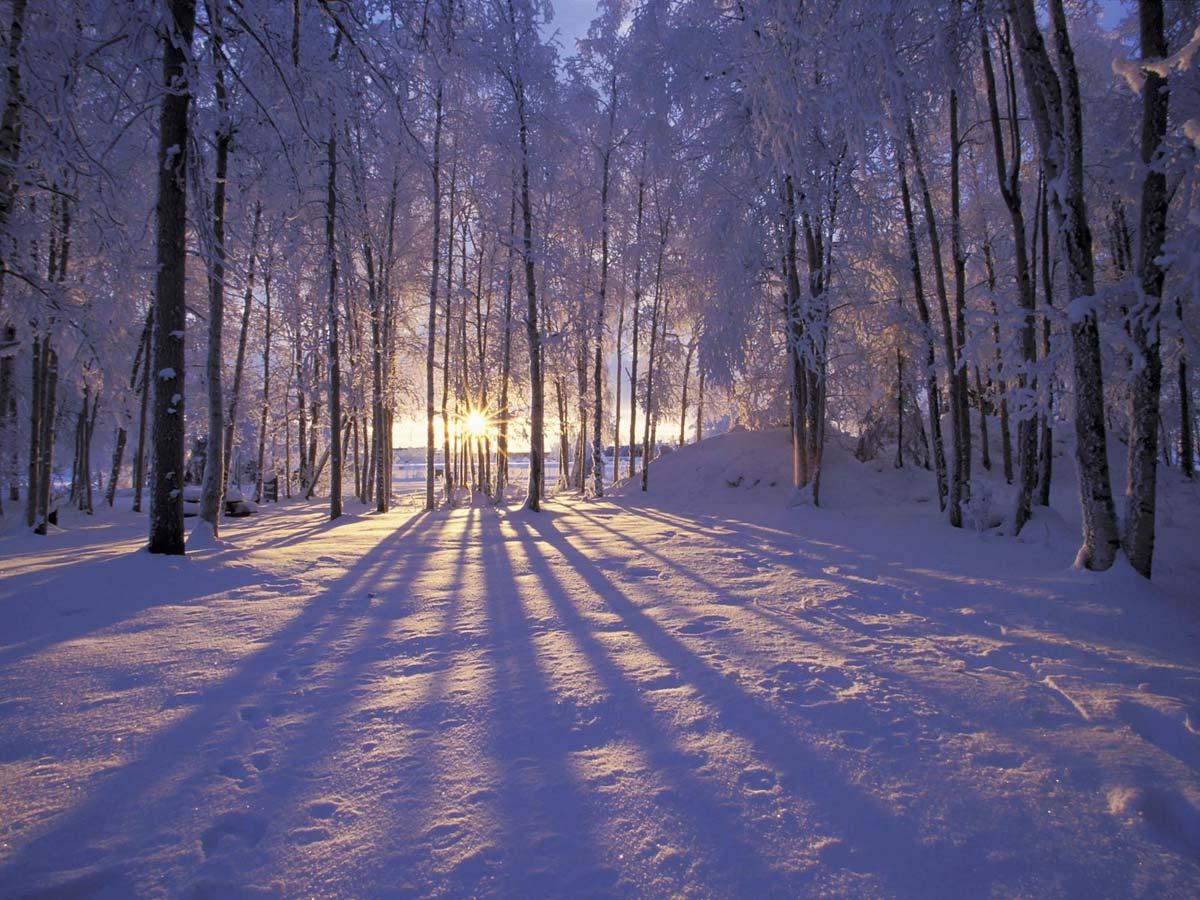 В России, где зима - это довольно продолжительное...